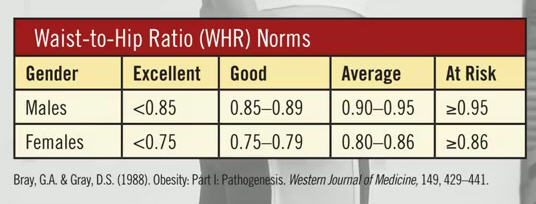 hip to waist ratio chart: How to accurately find your waist to hip ratio bmi video