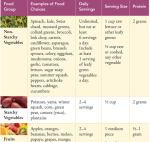 Brochure snapshot - plant-based diet food grups
