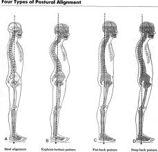 posture and alignment