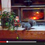 Rockie the plant-based fitness mascot&#8217;s 2012 Christmas video: &#8216;Rockie&#8217;s Naughty Christmas&#8217;